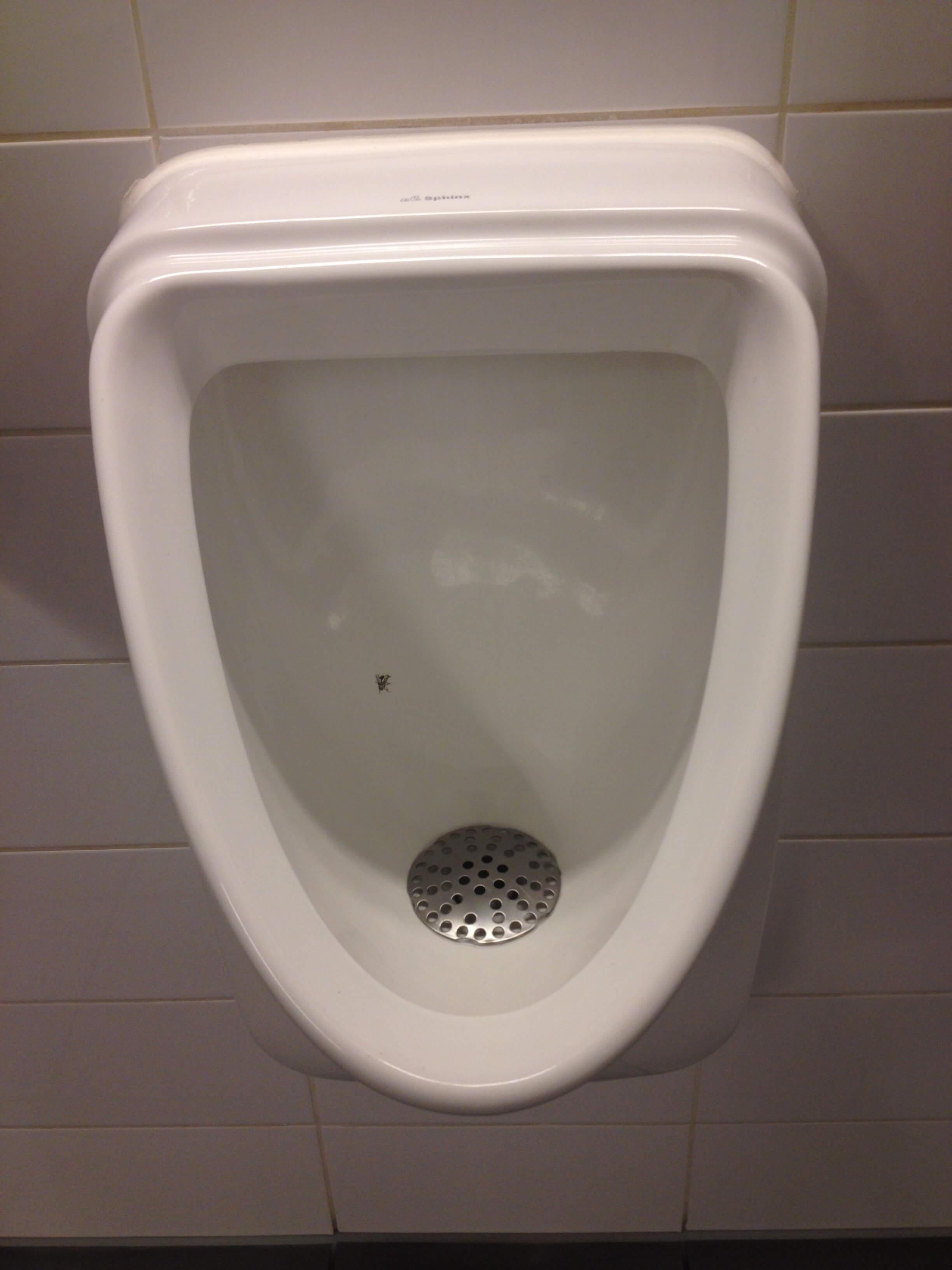 Urinal med flue på Aarhus Universitet